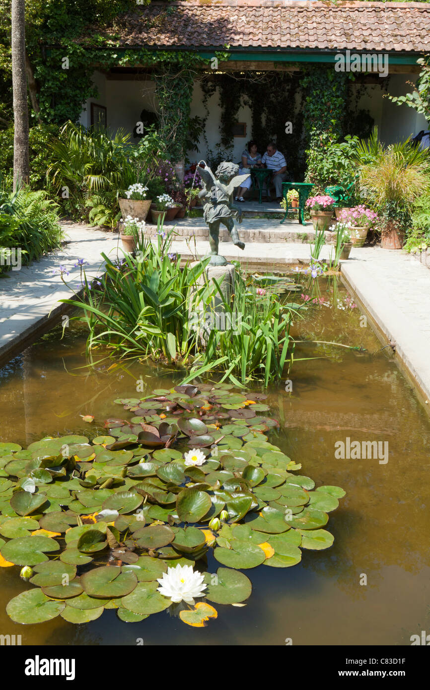 A lily pond at The Lost Gardens of Heligan, Pentewan, St.Austell, Cornwall - Stock Image