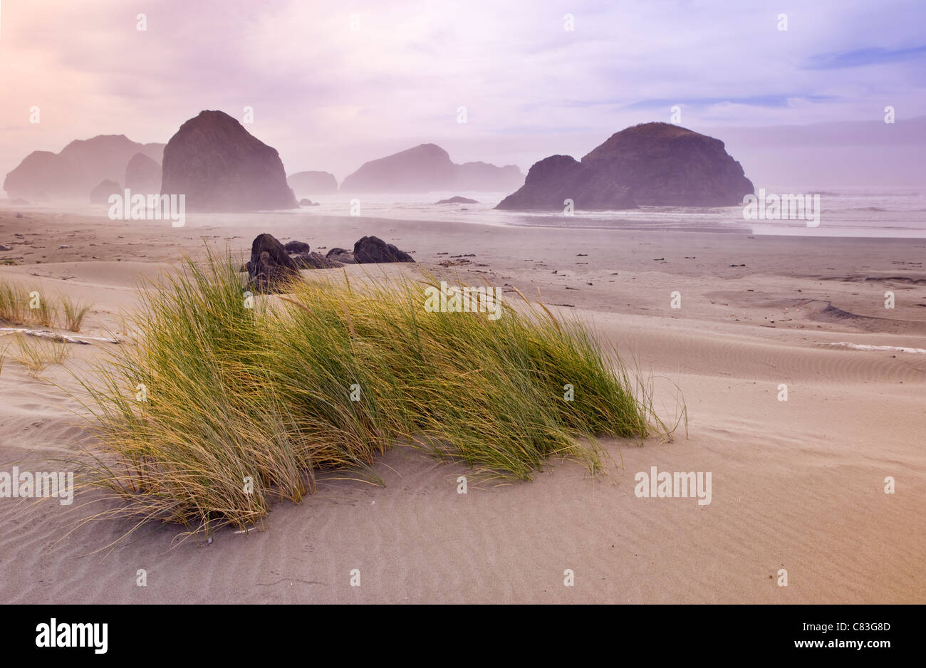 Deserted beach scene in southern Oregon - Stock Image