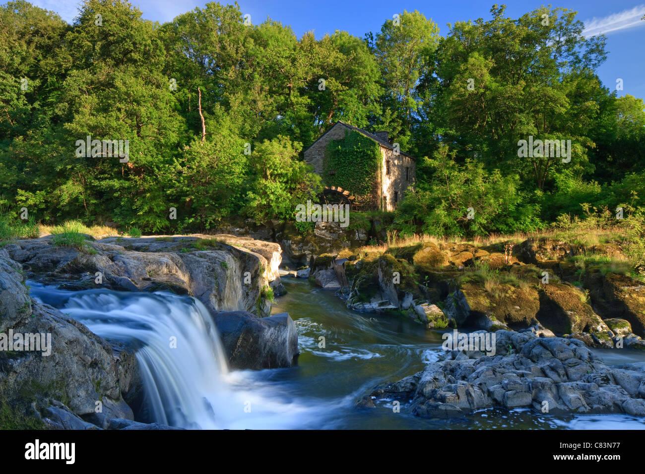 Cenarth Waterfalls Carmarthenshire Wales - Stock Image