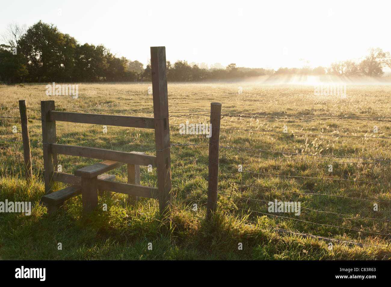 Wooden fence in grassy field - Stock Image