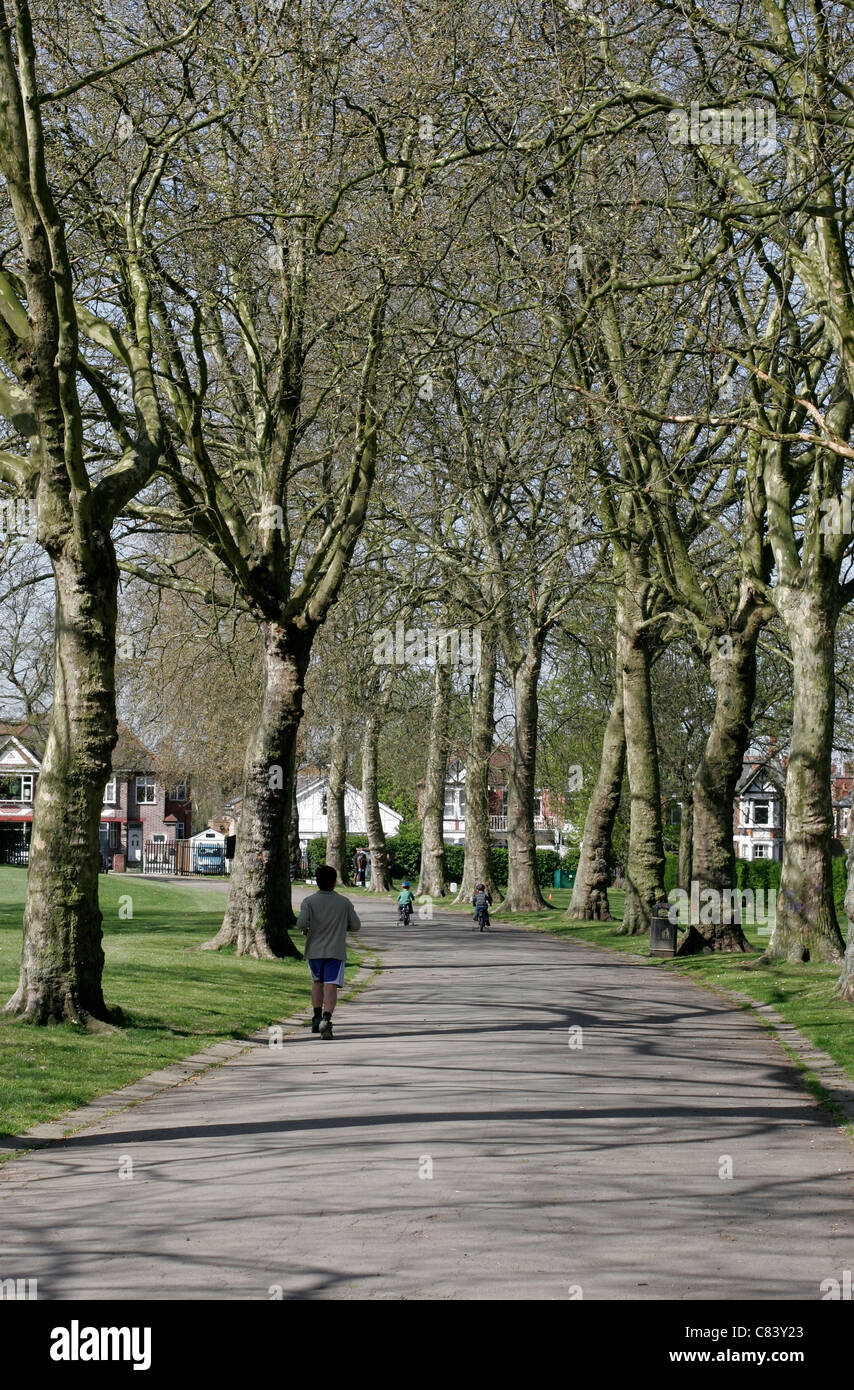 Roundwood Park in North West London - Stock Image