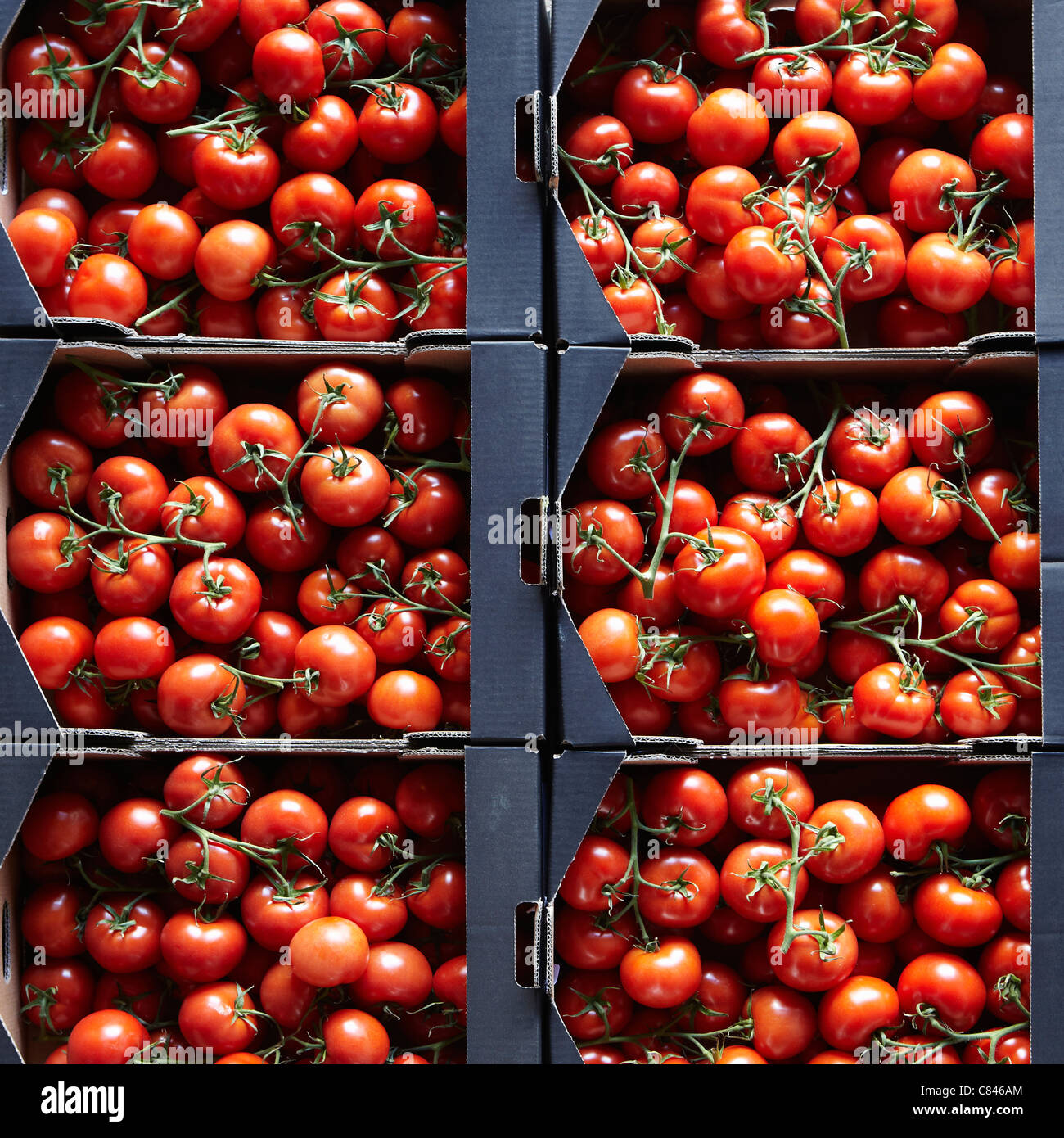 Packages of cherry tomatoes - Stock Image