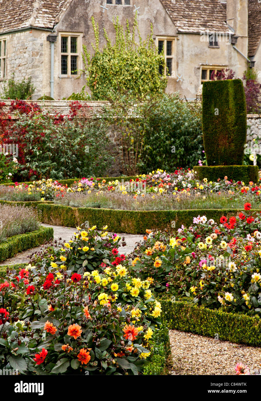 Formal garden of dahlias and low box hedges in front of a typical English country manor. - Stock Image