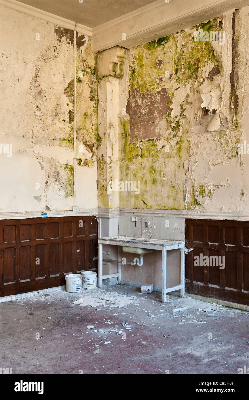 A room in a disused Victorian building is badly damaged by damp after vandals stripped the lead off the roof Stock Photo