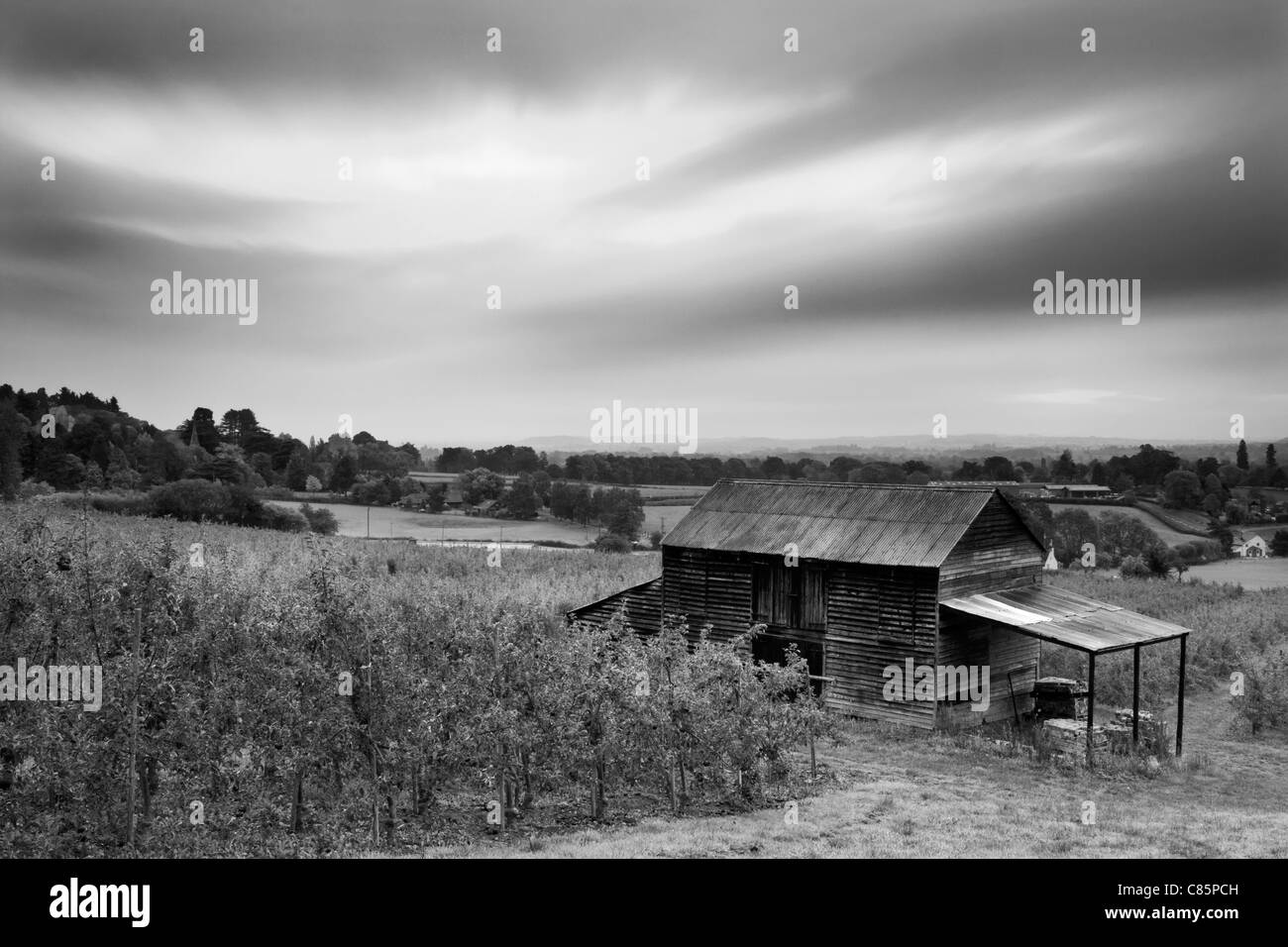 Old Apple Barn in Orchard Gloucestershire UK - Stock Image