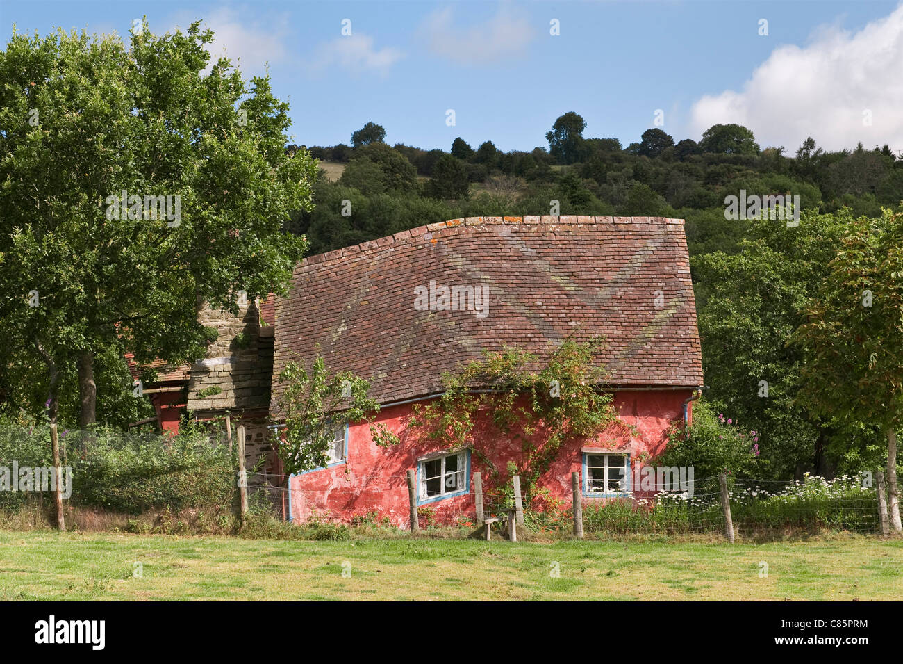 A little crooked house - a cottage in Herefordshire, painted with pink limewash - Stock Image