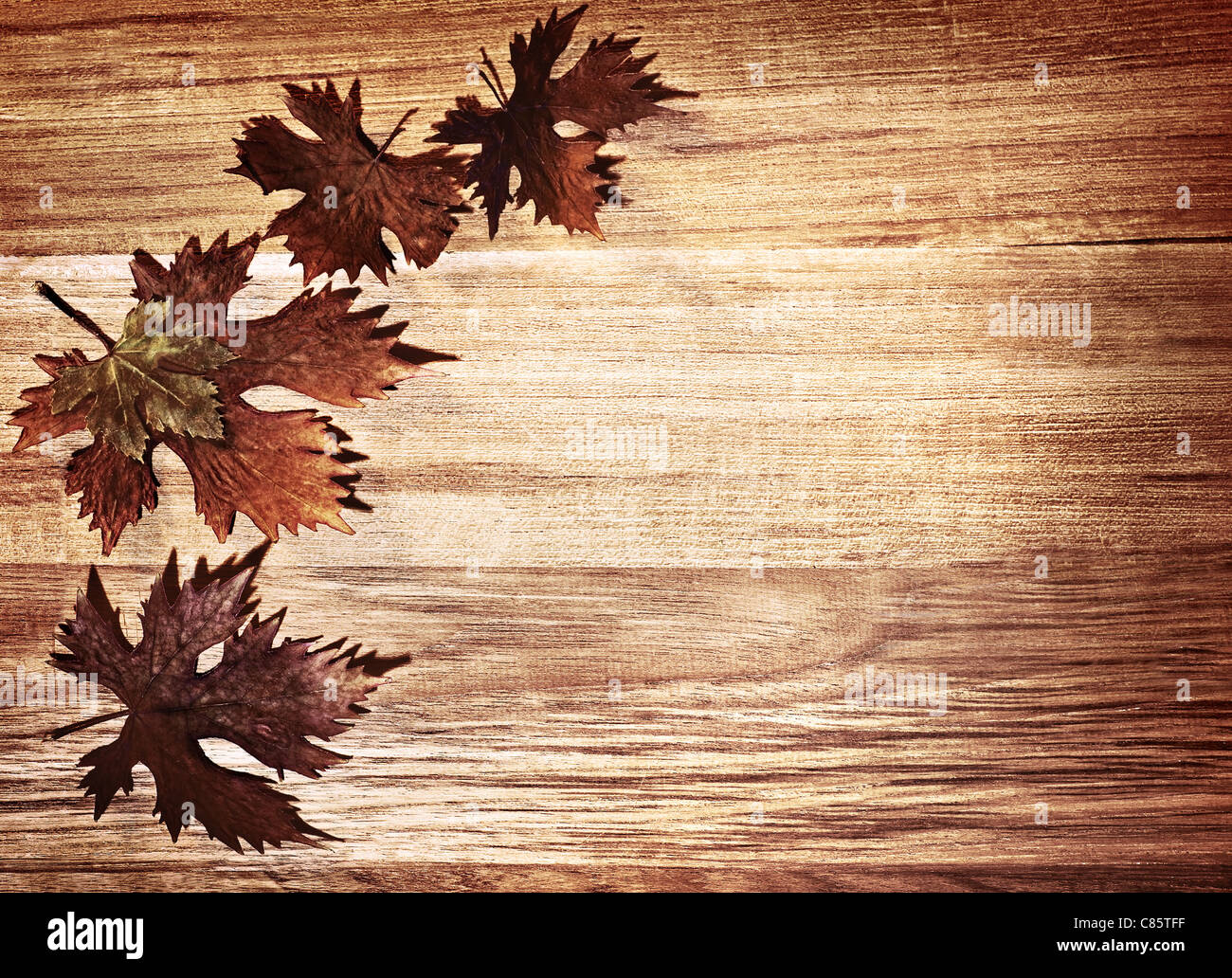 autumn leaves border over natural wood background old dry leaf