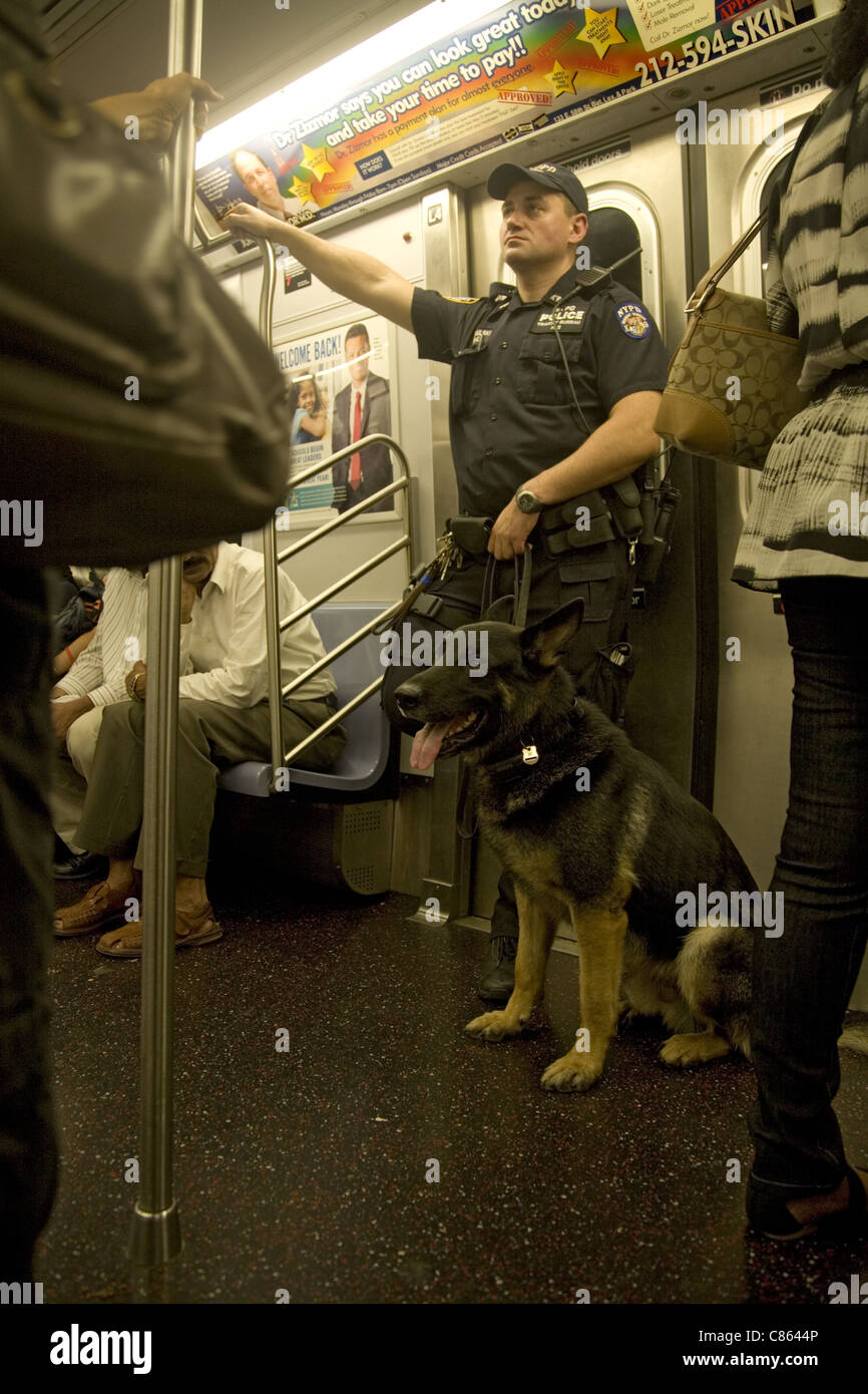 Transit cop with a police dog in tow patrolling the subway in New York City. - Stock Image