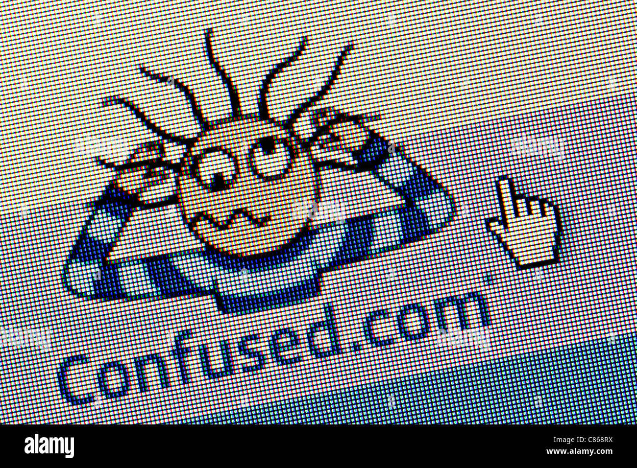 Confused.com logo and website close up - Stock Image