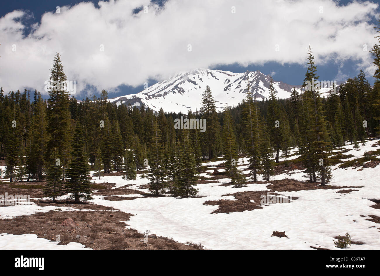 Mount Shasta in late spring, north California, USA - Stock Image