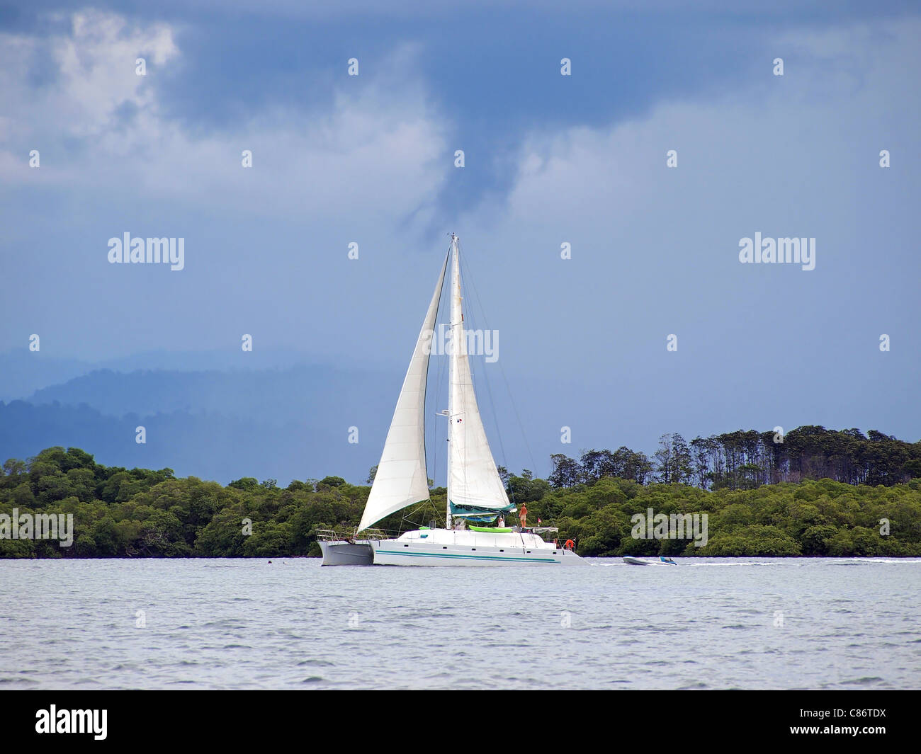 Catamaran and stormy sky with mangrove in background - Stock Image