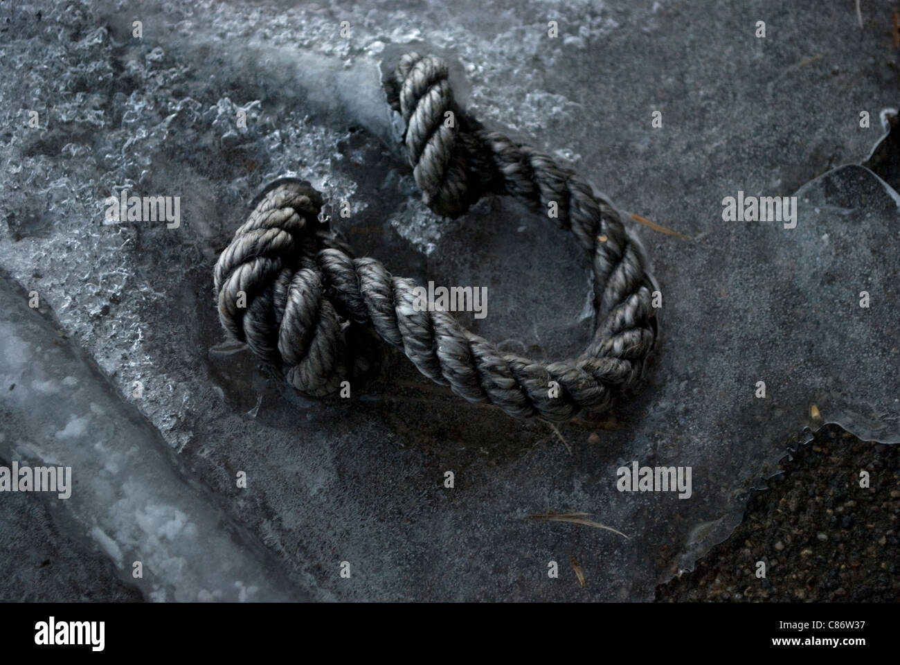 A piece of wound and knotted nautical rope protruding from ice. - Stock Image