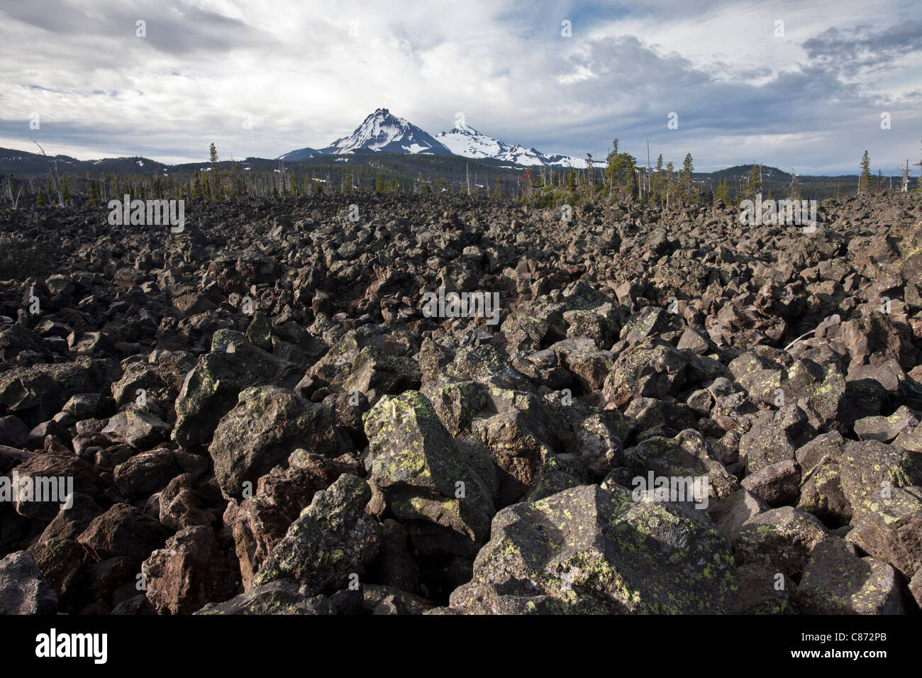 huge lava fields of the Belknap Crater Complex on the McKenzie Pass (5335ft/1623 m), Cascade Range in central - Stock Image