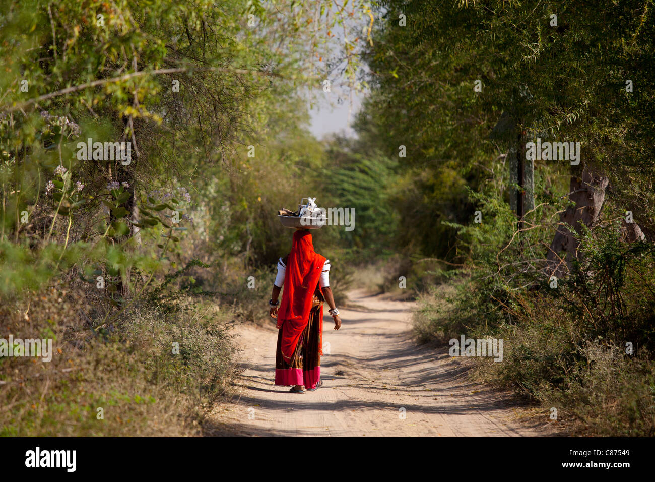 Indian Bishnoi woman carrying bowl for lunch for agricultural workers near Rohet in Rajasthan, Northern India - Stock Image