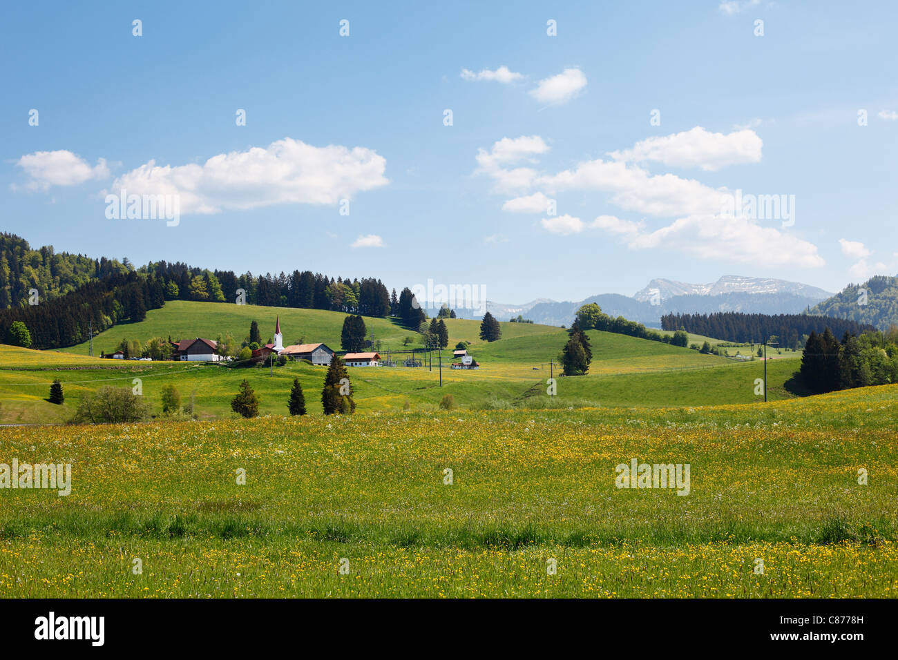Germany, Bavaria, Swabia, Allgaeu, Oberallgaeu, Oberstaufen, Zell, View of village with meadow - Stock Image