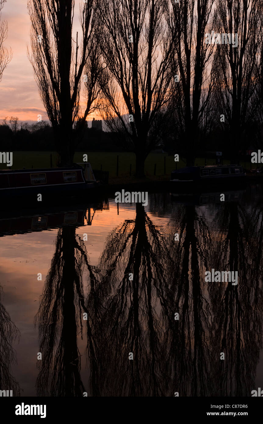 Sunset with silhouetted Poplar trees reflected in the Grand Union canal in Cosgrove, Northamptonshire, England. - Stock Image