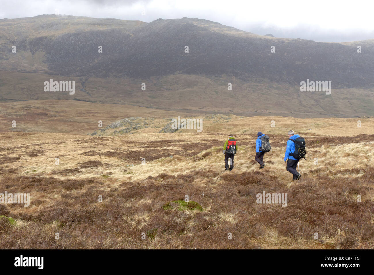 Hill walkers in the Moelwyns, Snowdonia. - Stock Image