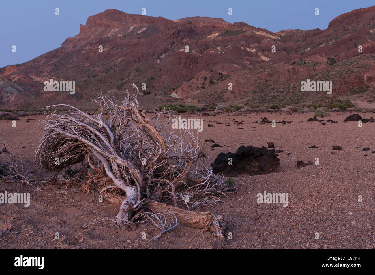 View across the Llano de Ucanca in the Las Canadas del Teide national park on Tenerife, Canary Islands, Spain - Stock Image