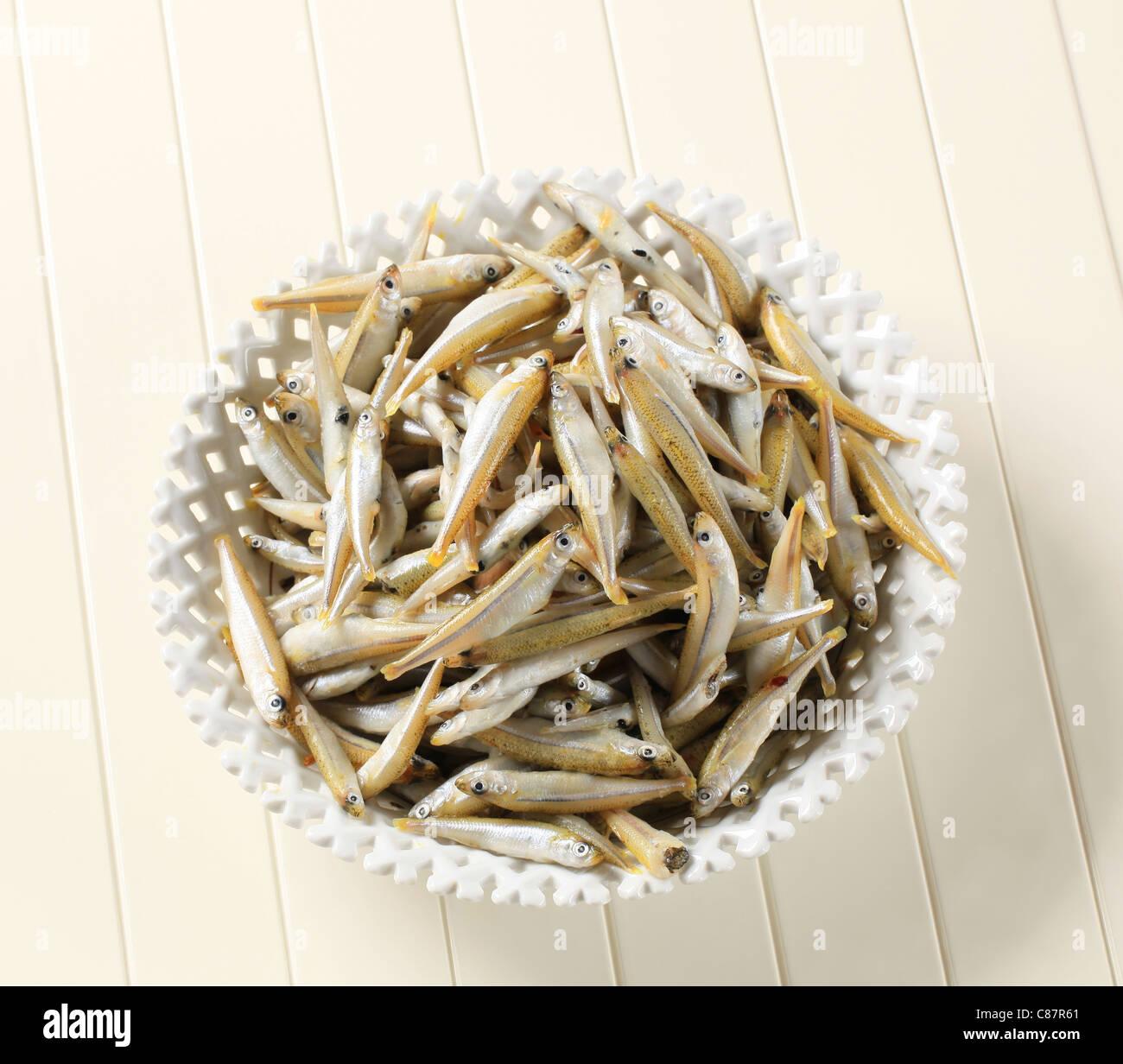 Bowl of fresh sprats - Stock Image