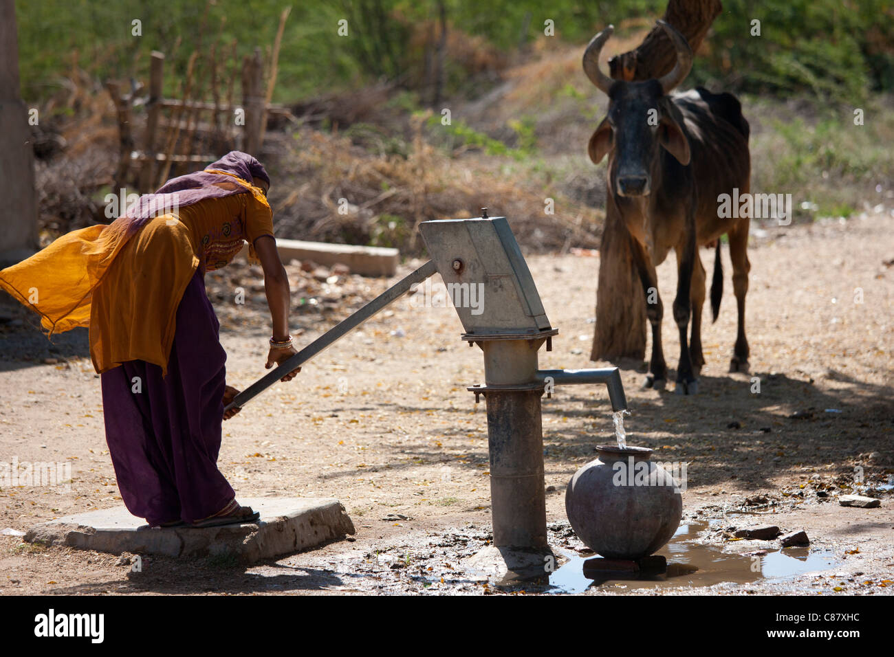 Indian woman pumping water from a well at Jawali village in Rajasthan, Northern India - Stock Image