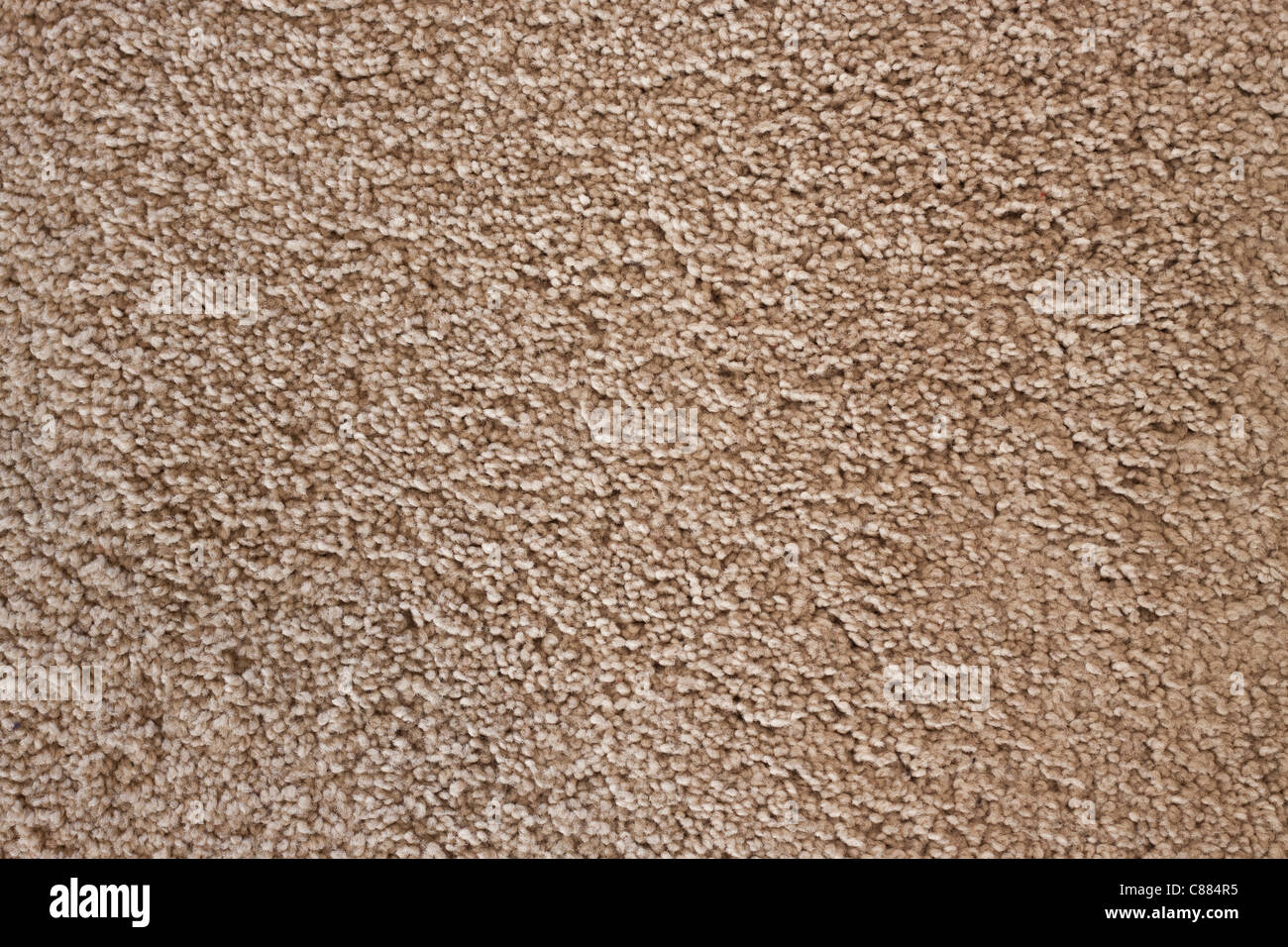 Detail of soft wool carpet, detailed texture background. - Stock Image