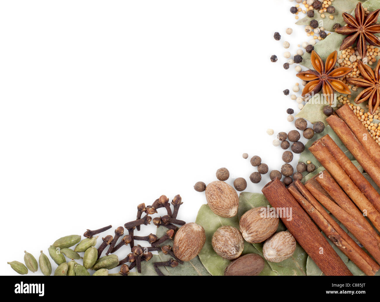 Background of different spices over white - Stock Image