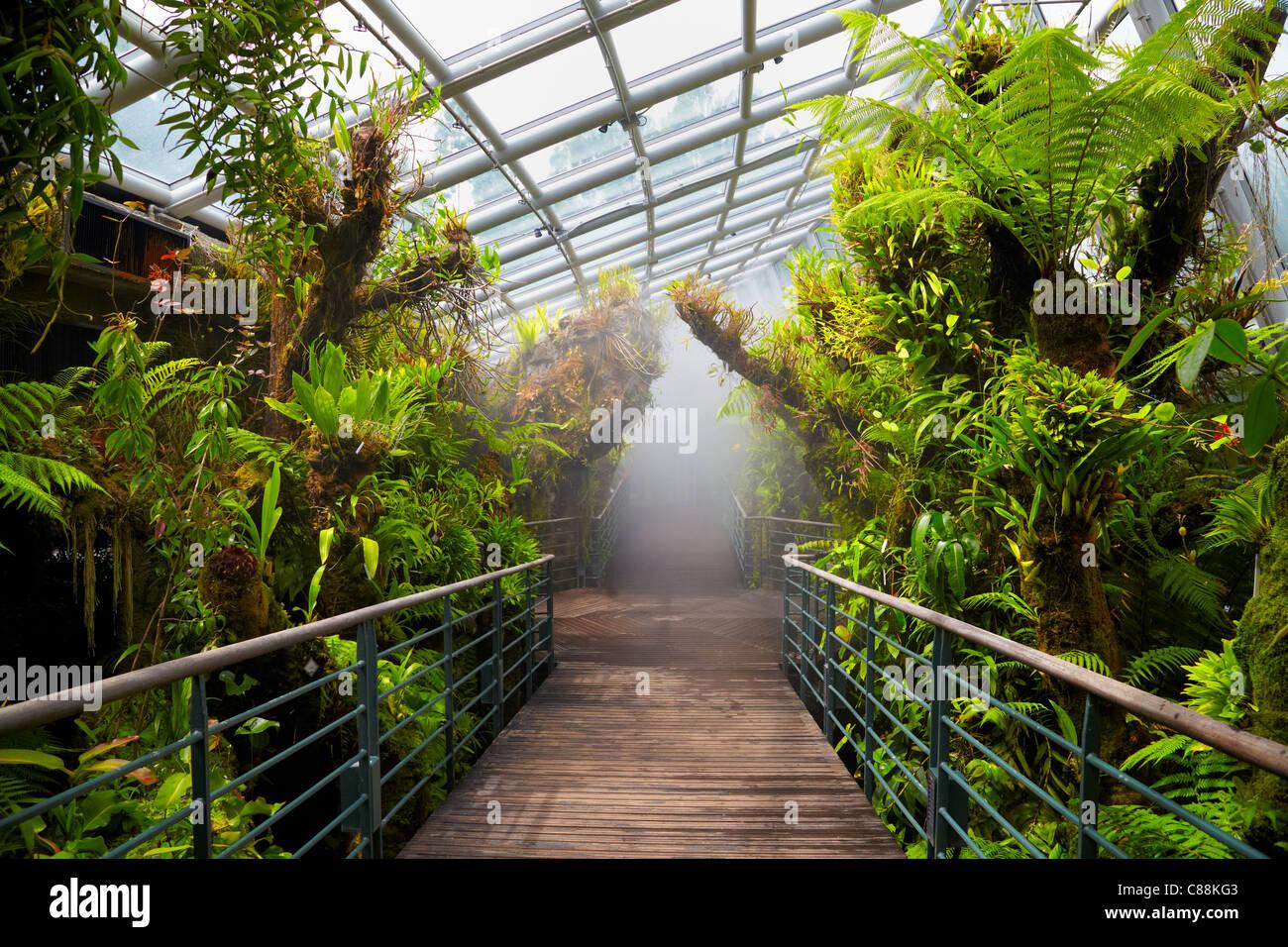Singapore Botanic Gardens Directions Garden Ftempo