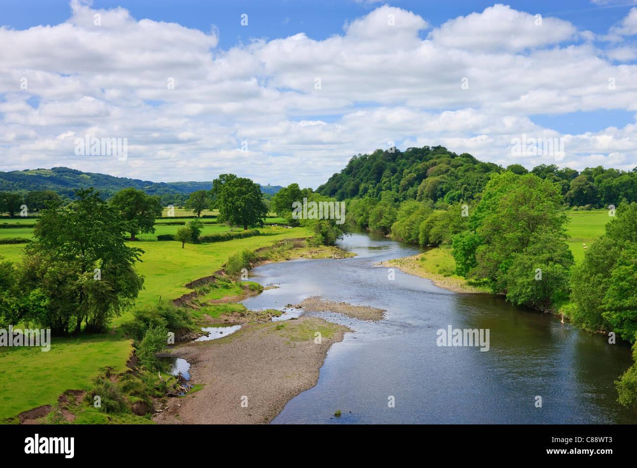River Towy Llandeilo Carmarthenshire Wales - Stock Image