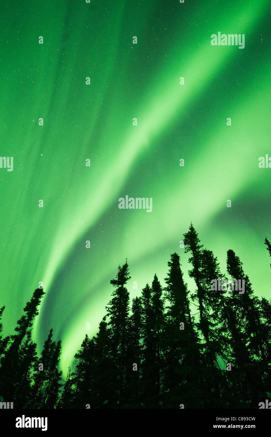 Aurora Borealis or Northern Lights, Northwest Territories, CANADA - Stock Image