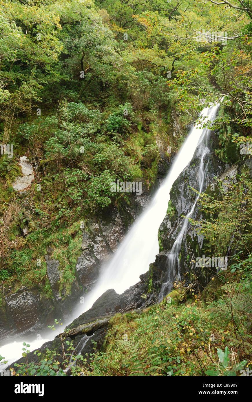 Mynach Falls, Devil's Bridge, Ceredigion, Wales, UK - Stock Image