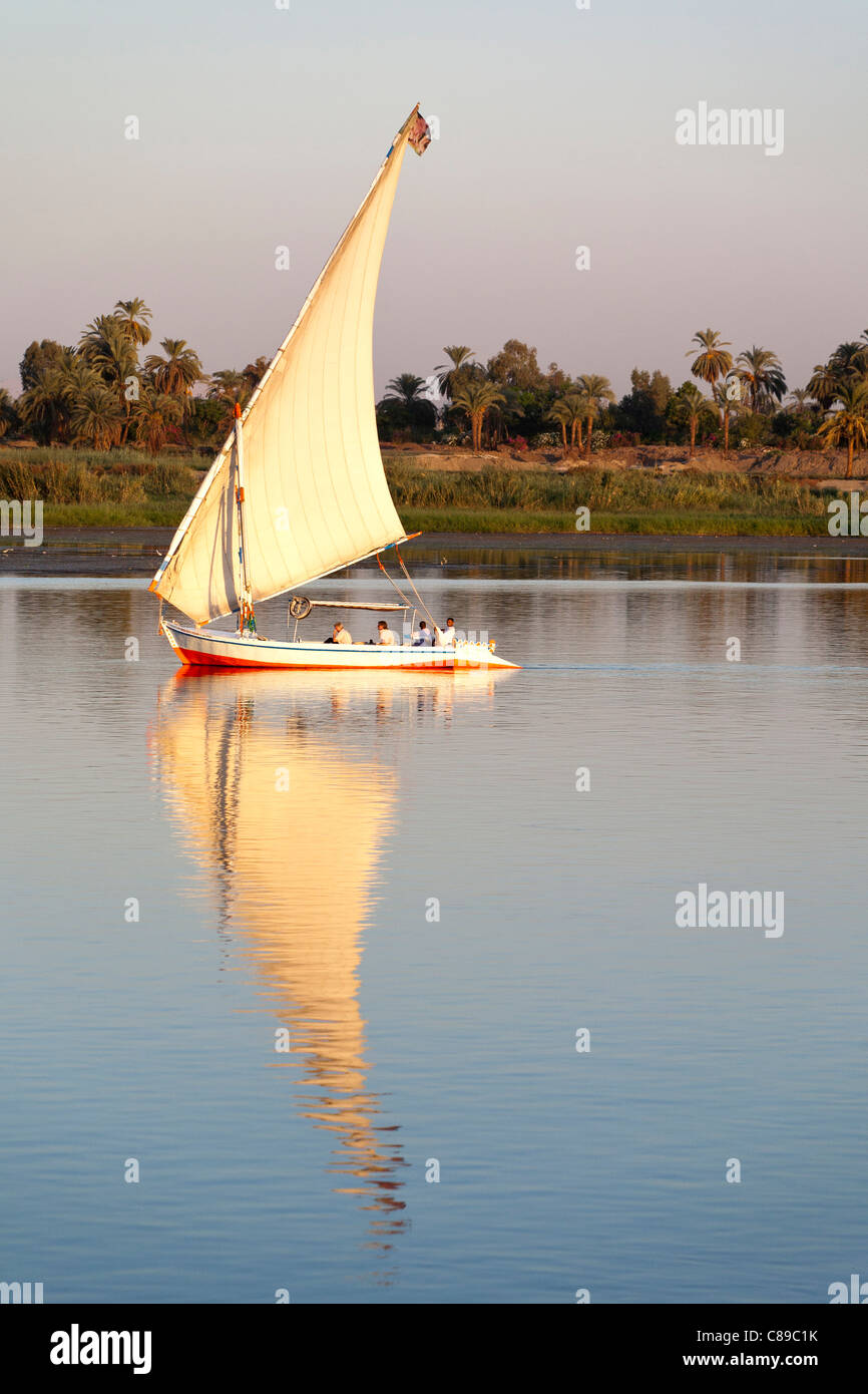 Nile felluca sailing right to left reflected on very calm water with palm and tree lined Nile bank behind - Stock Image