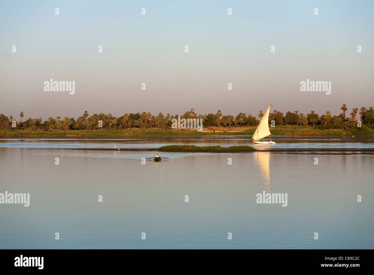 Nile felluca sailing right to left reflected on calm water with palm lined Nile bank behind with small fishing boat - Stock Image