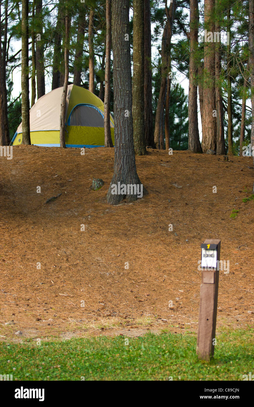 camping in the woods. Contemporary Woods Tent Camping In The Woods At A Remote Wilderness Campsite Inside In The G