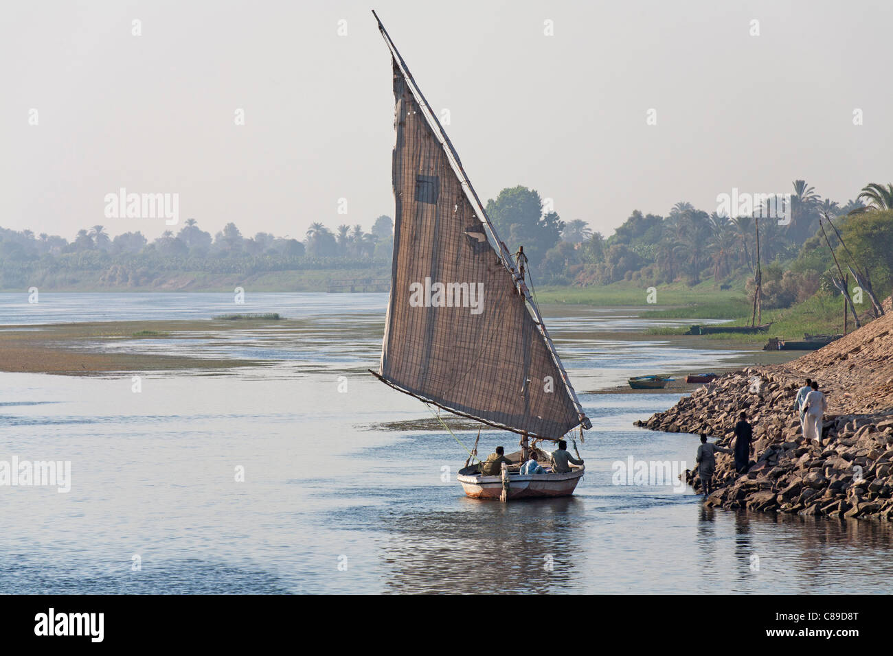 Nile felluca arriving in shallow water to a spit of land with four men running to meet it, palms and trees in distant - Stock Image