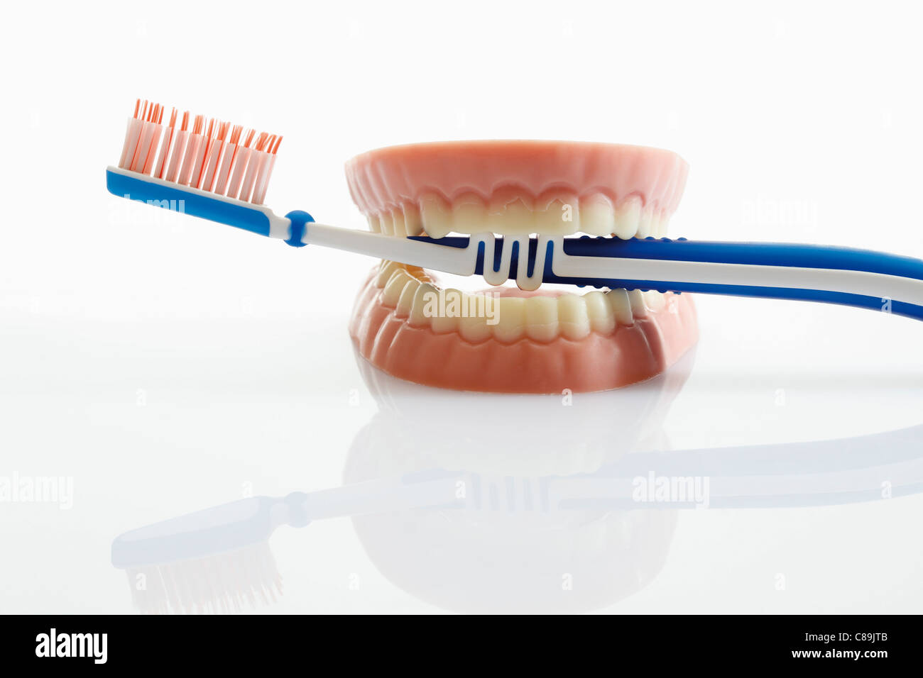 Dentures made of sugar and white chocolate with toothbrush on white background, close up - Stock Image