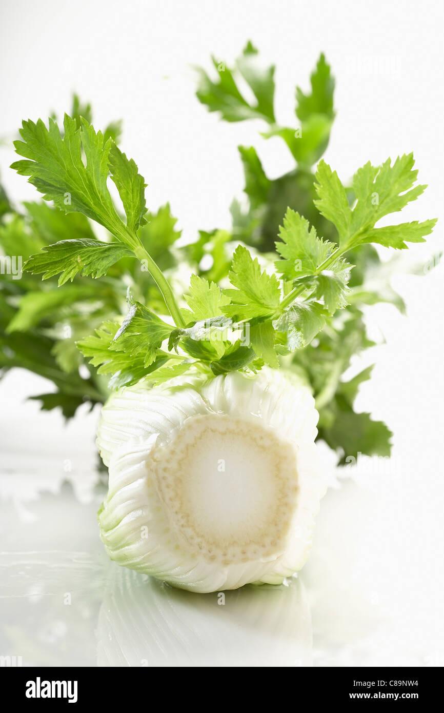 Celery stalks - Stock Image