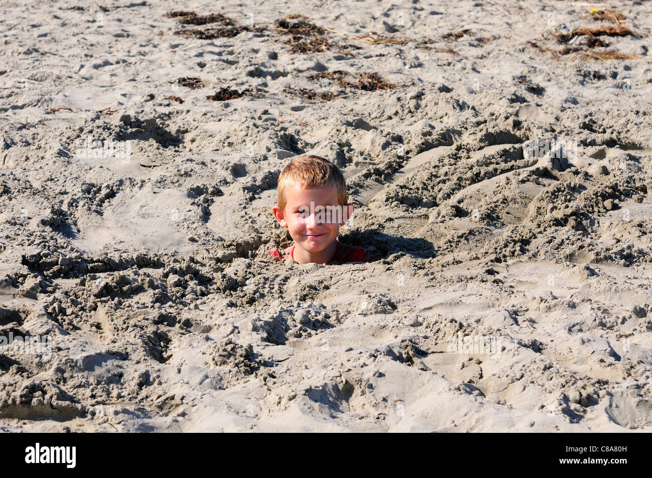 Boy buried in sand   on West Wittering beach during the unusually hot weekend of 1st 2nd October 2011, near Chichester, - Stock Image