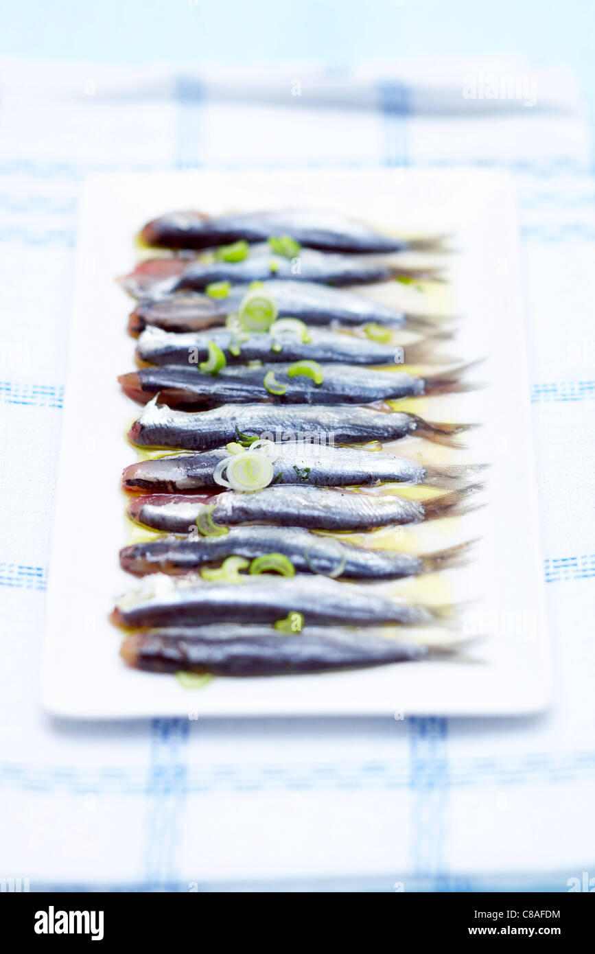 marinated anchovies - Stock Image