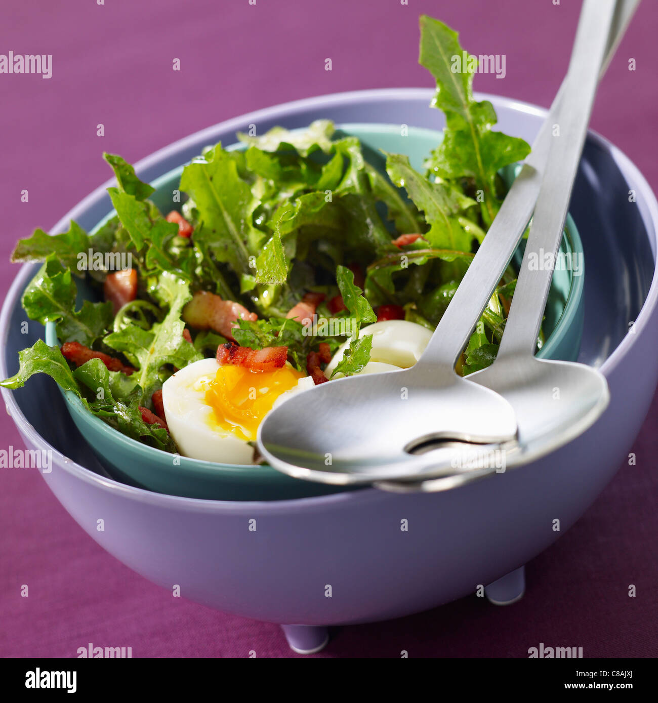 Dandelion and diced bacon salad with a soft-boiled egg - Stock Image
