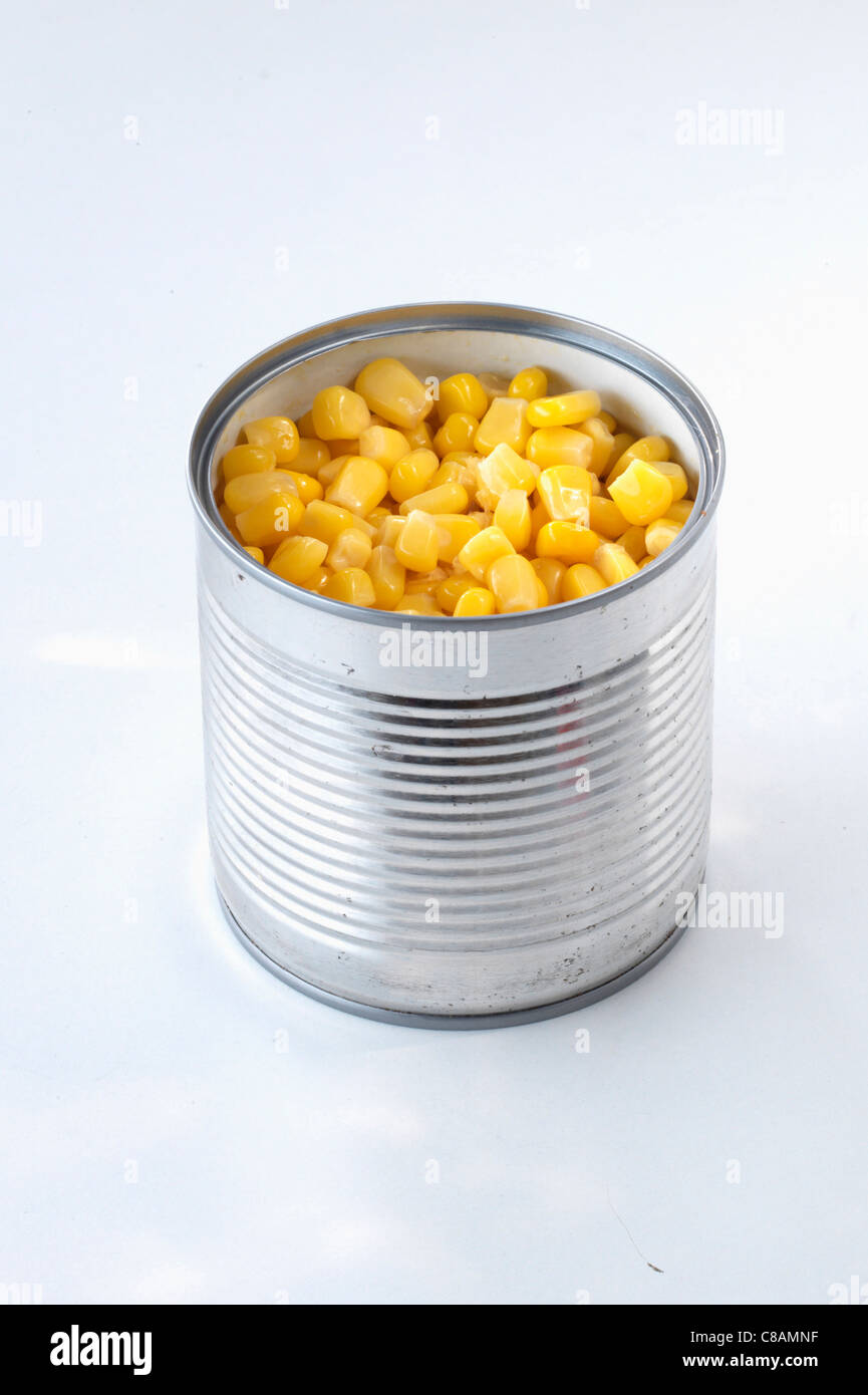 Canned corn - Stock Image