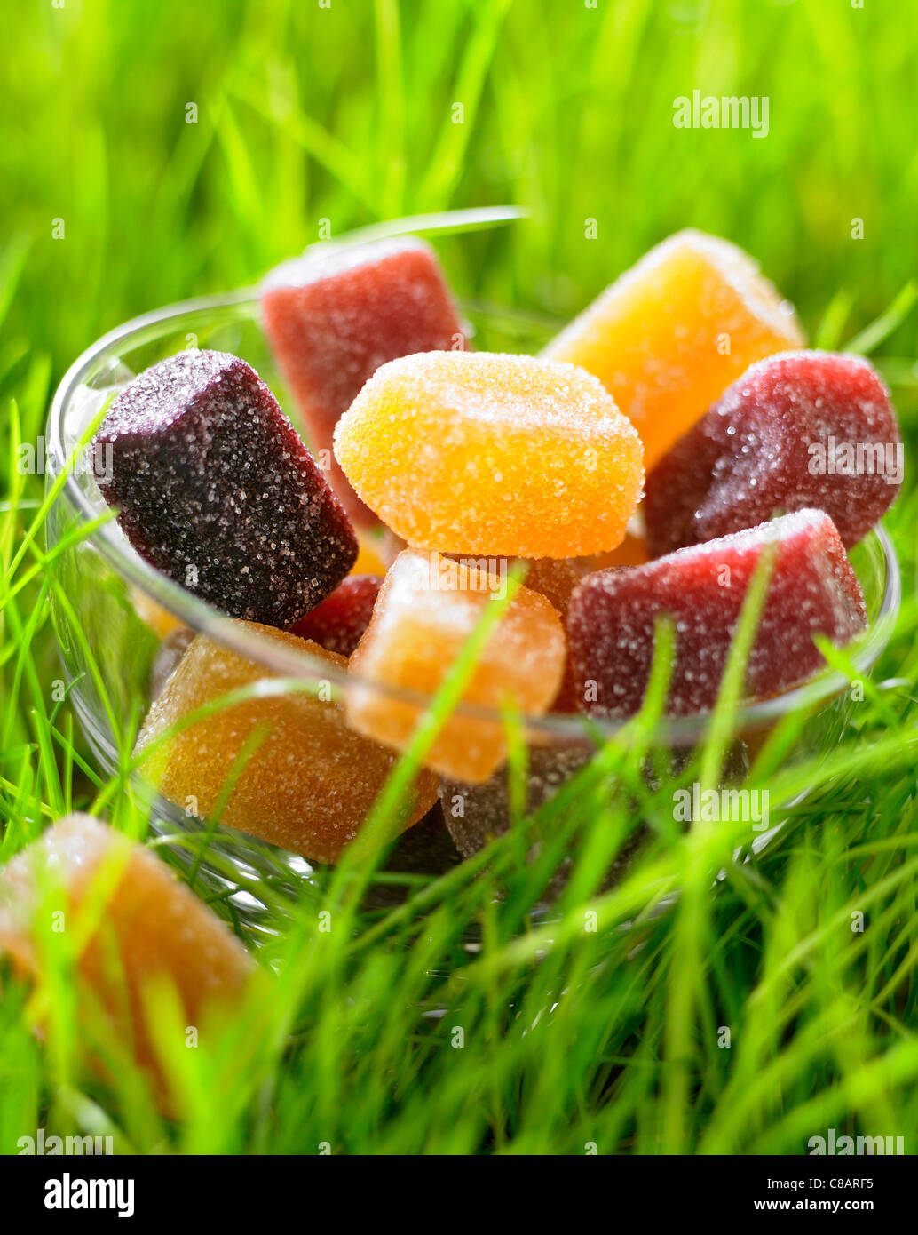 Bowl of fruit pastes on the grass - Stock Image