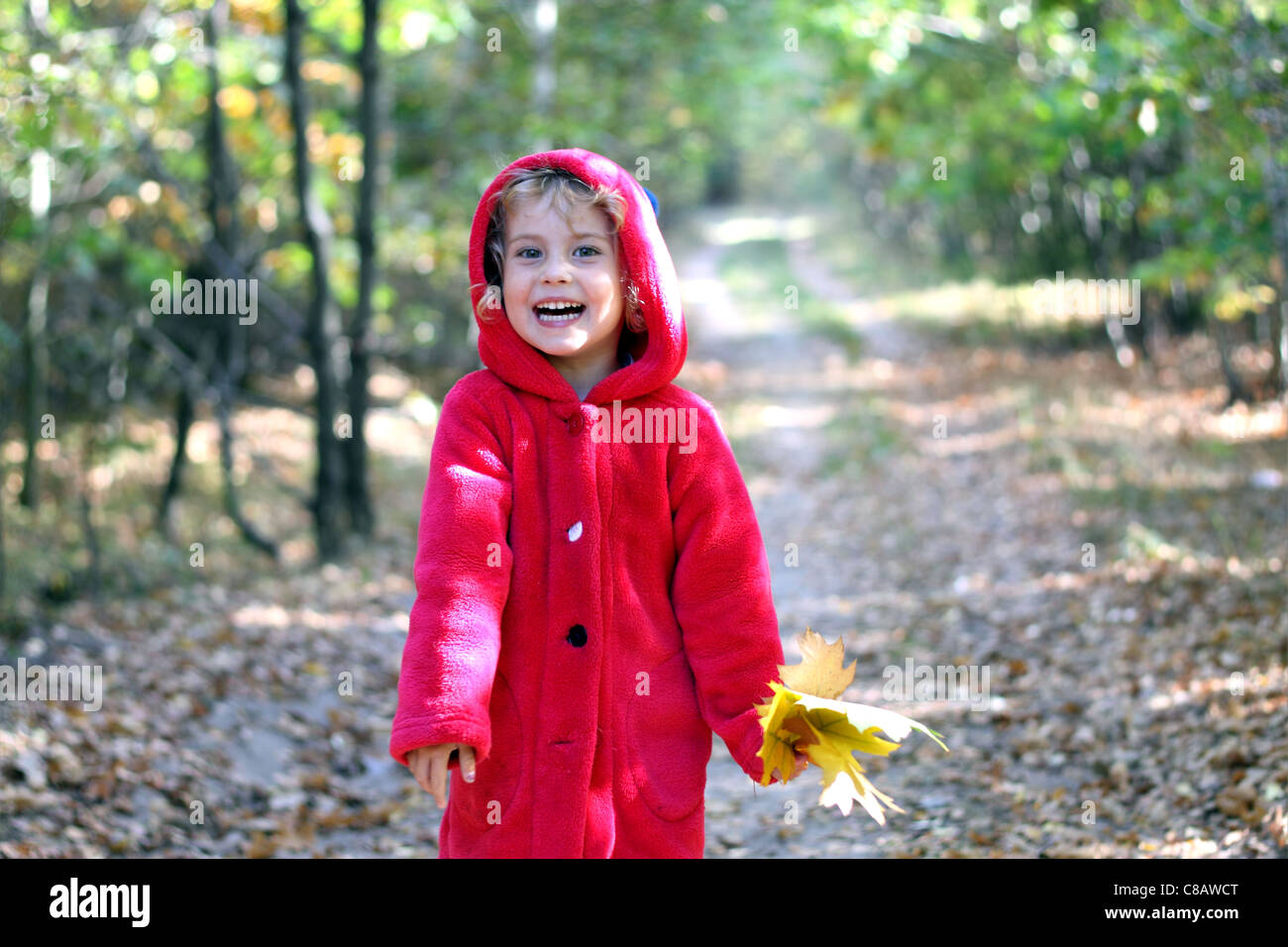 The little girl in a red cap in the autumn forest - Stock Image