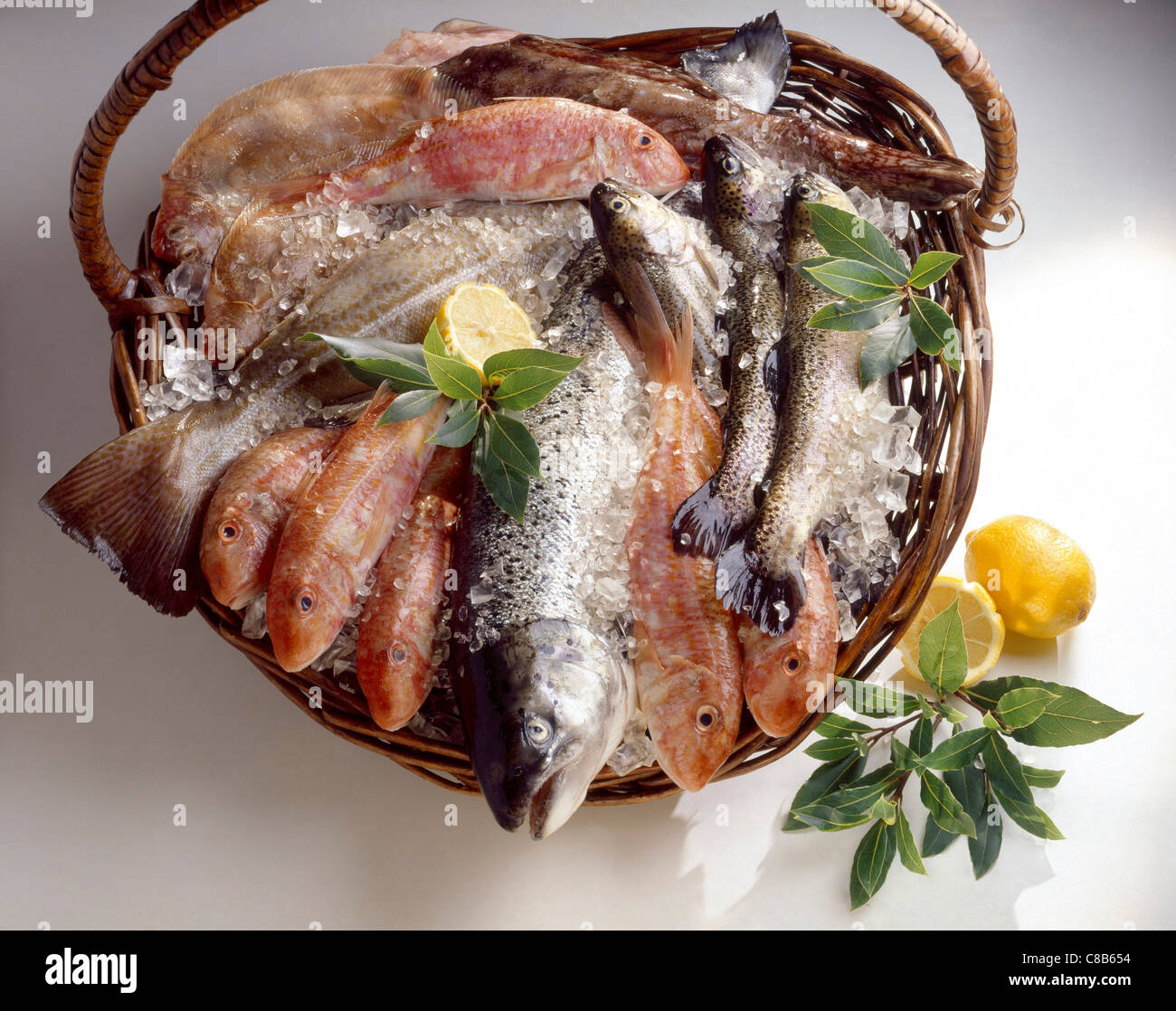 082fcf260f1d Selection Of Fish Stock Photos   Selection Of Fish Stock Images - Alamy