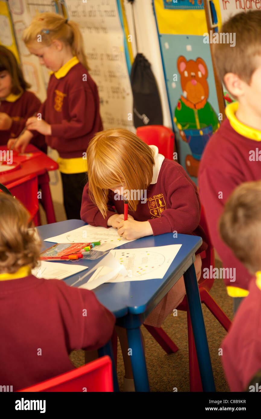 Primary school children working in a classroom, Wales UK - Stock Image