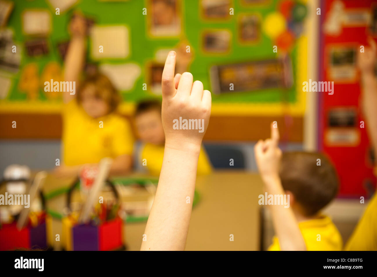 Primary school children in a classroom, Wales UK - hands up answering questions in class - Stock Image