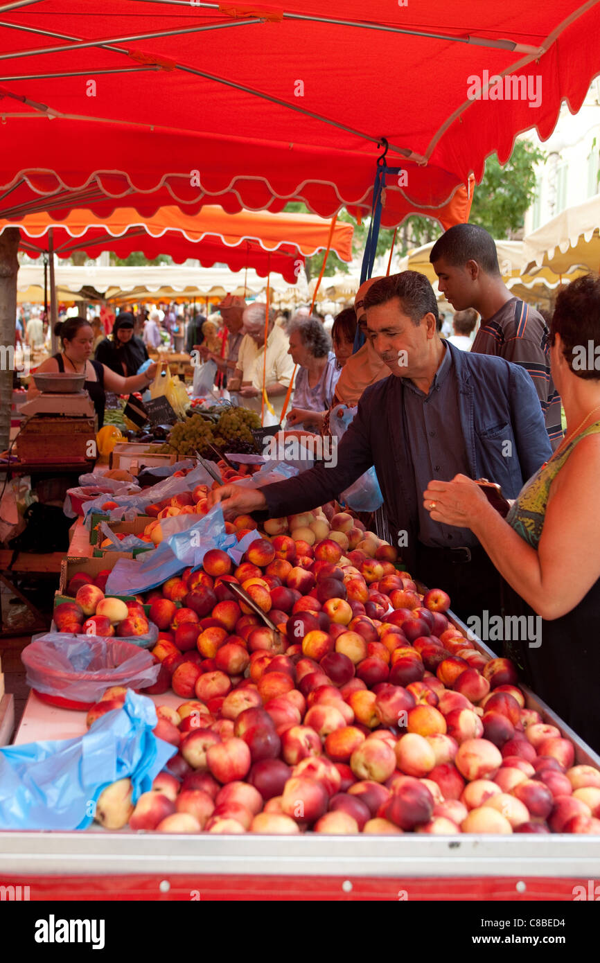 customers shopping for value, buying fresh fruit at the market place Toulon France - Stock Image