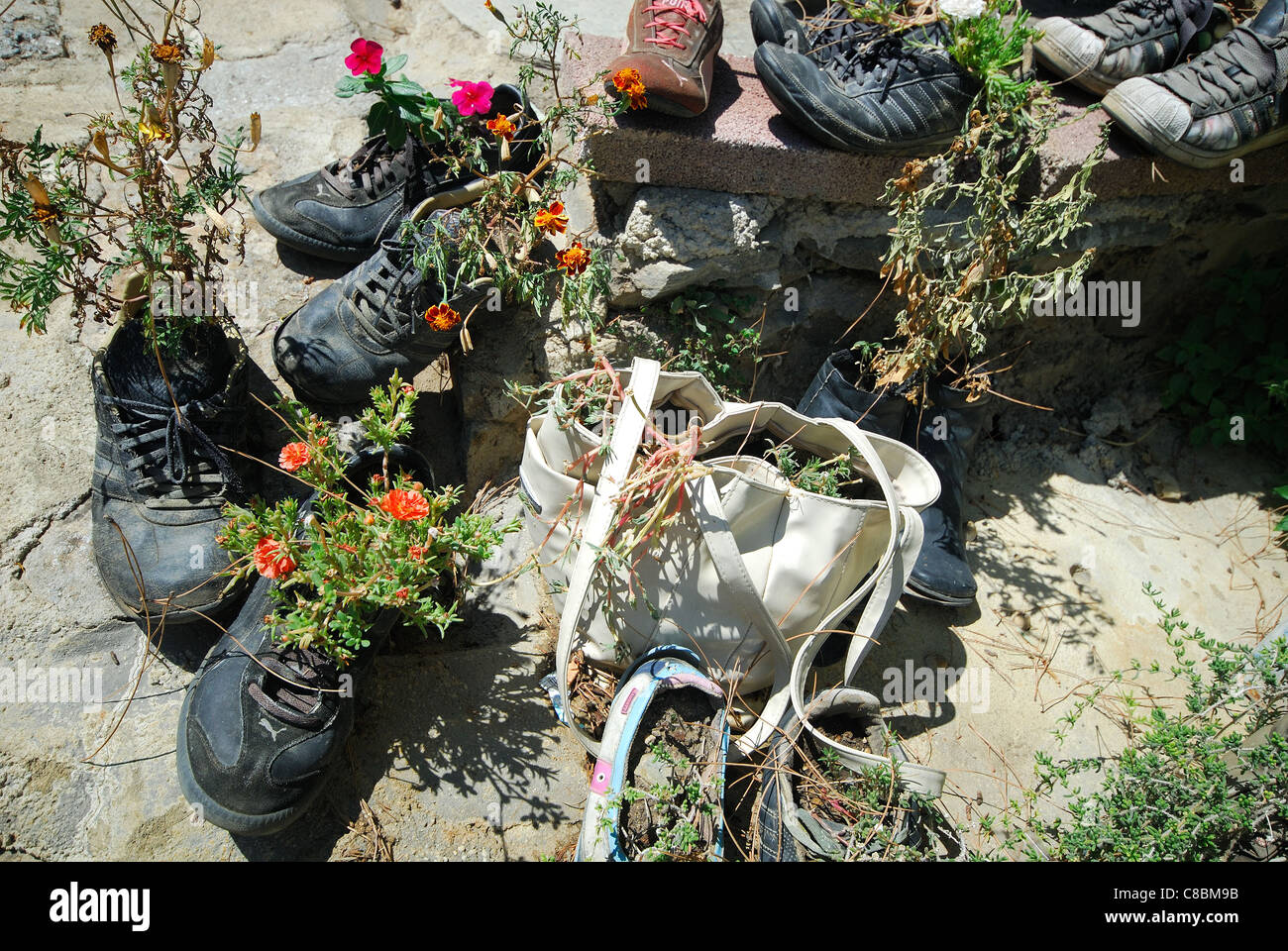 Old shoes and a handbag creatively recycled as plant pots in a garden. 2011. - Stock Image
