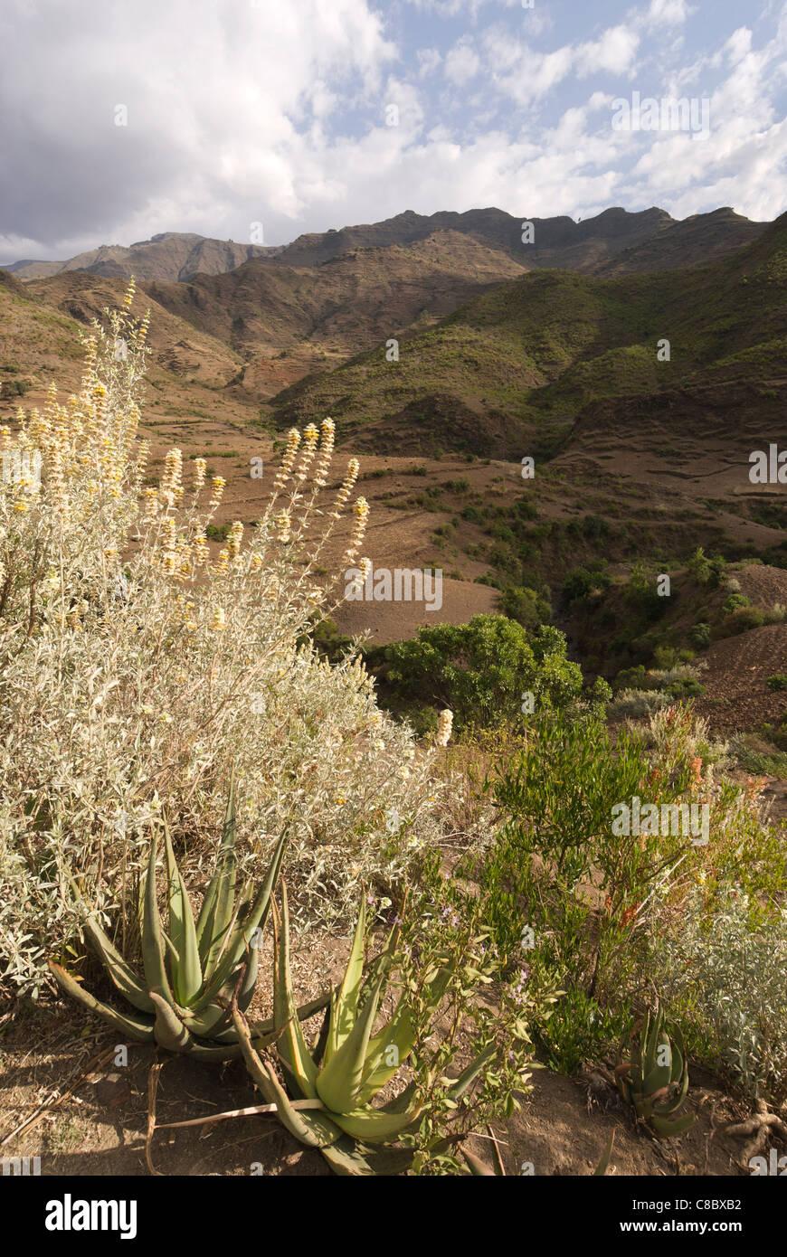 Elk200-3246v Ethiopia, Lalibela,Yemrehanna Kristos, landscape - Stock Image