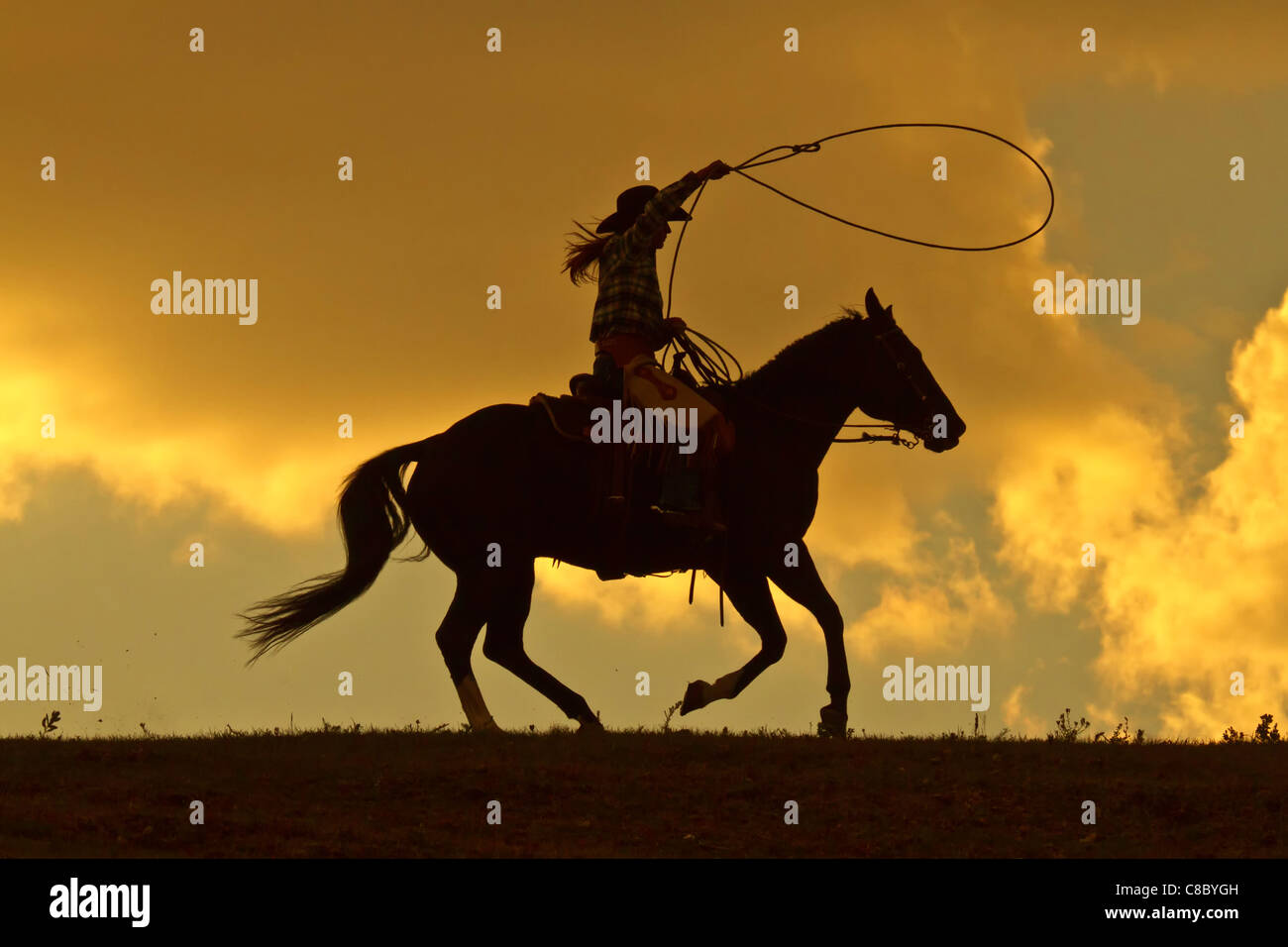 Cowgirl in silhouette with a lasso on a horse racing against a dramatic sky - Stock Image