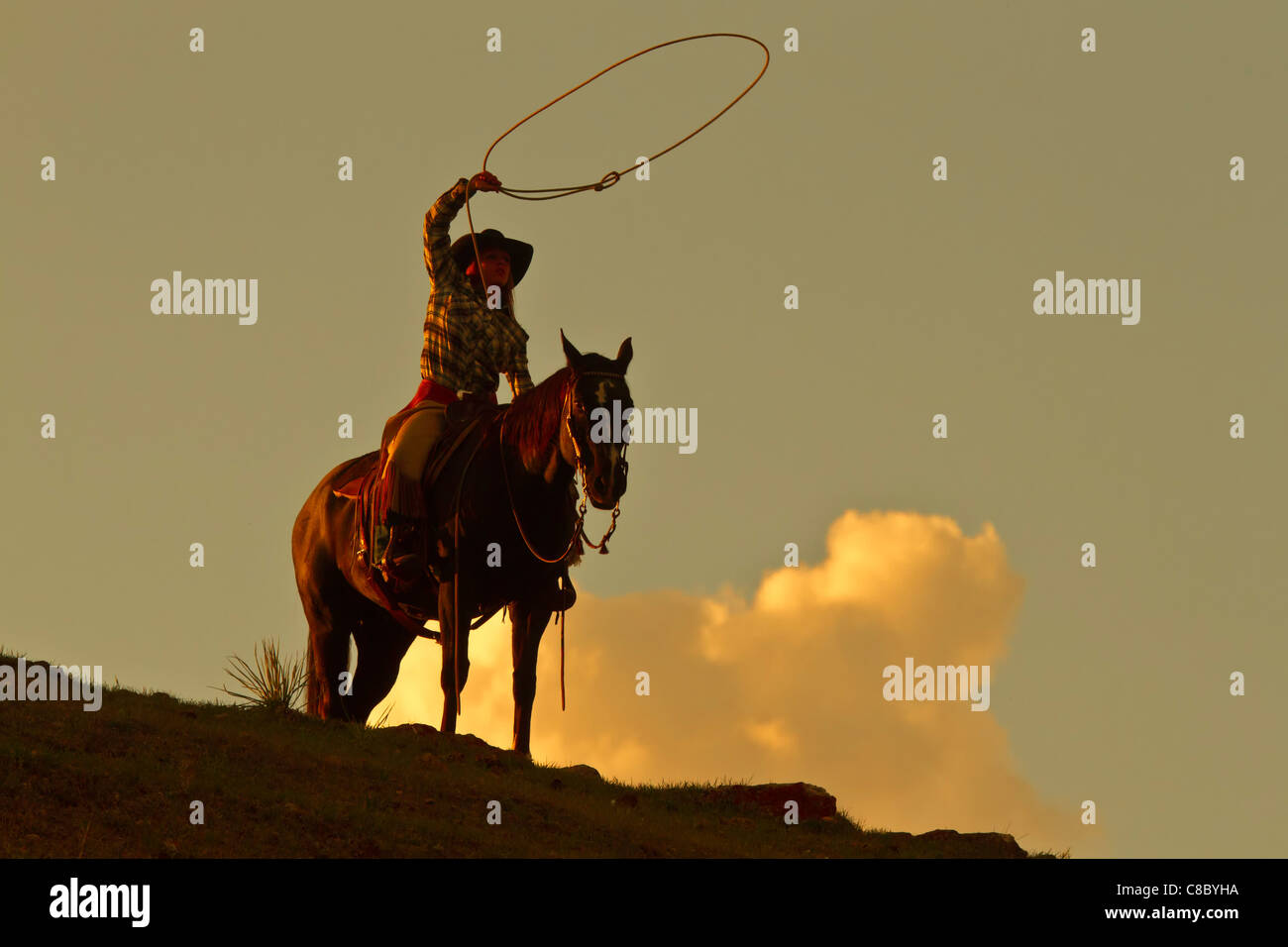 Cowgirl spinning a lasso against a dramatic sky in partial silhouette - Stock Image